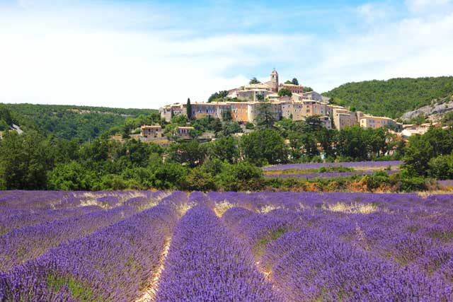 Ambiance Provence dans l'arrière Pays...